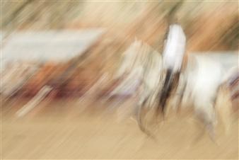 Danny Johananoff - Rodeo - 2 Photograph on Plexiglass, Photography