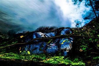 Gabriela Segura - States of Nature Photograph on Metallic Paper, Photography