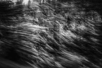 Erin Wang - Fleeting Landscape I Photograph on Fine Art Paper, Photography