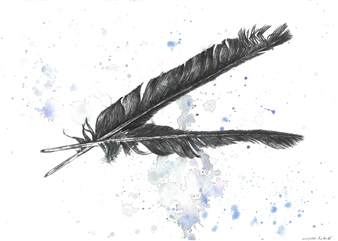Dominic Fondé - Fallen Feathers Mixed Media on Watercolor Paper, Drawings