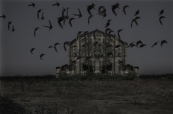 Shifra Levyathan - The Haunted House Photograph on Fine Art Paper, Photography