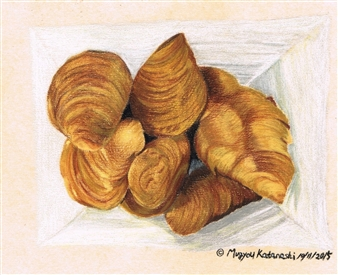 Atsushi Imai - Croissant Colored Pencil on Paper, Drawings
