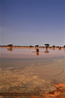 Ashraf Elsharif - Floods at North Omdurman Photograph on Fine Art Paper, Photography
