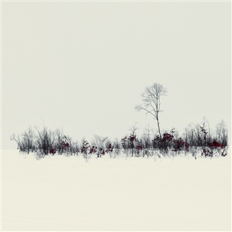 Harold Ong - Stillness Photograph on Hahnemühle Paper, Photography