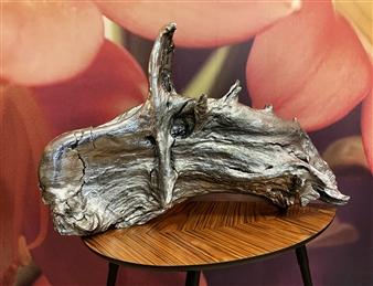 Javier Rivas - Cabeza de Caballo Chrome Wood, Sculpture