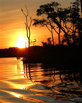 Petra Bernstein - August on the Wicomico River Photograph on Fine Art Paper, Photography