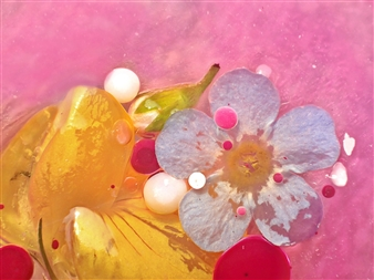 Lorella - Abstract Flower (30) Photographic Print on Metal, Photography
