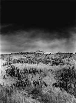 Antonio Biagiotti - Forest and Mountain Top Photographic Print on Board, Photography