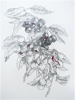 Stephanie E. Graham - Threaded Cherries Pen on Paper, Drawings