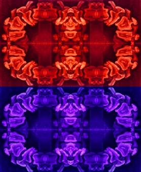 Stacey Dolen - Vertebrae In Orange and Blue Digital Collage on Paper, Digital Art