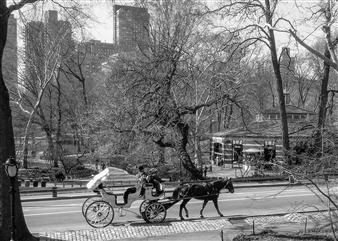Carolyn Rogers - Carriage Platinum/Palladium Photograph, Photography