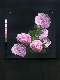Pamela Bennett Ader - Pinks on Black Mixed Media Collage, Mixed Media