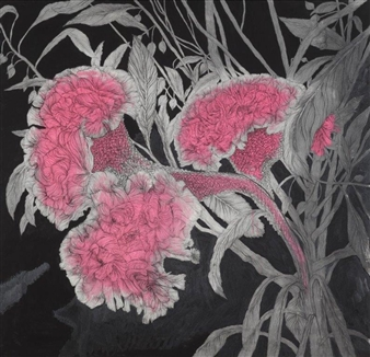 Su-Jeong NAM - Cockscomb Painting on Paper, Paintings