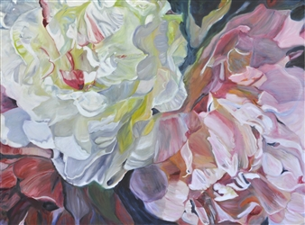 Helena McConochie - Waterdrops on Peonies 'Jennifer' Oil on Canvas, Paintings