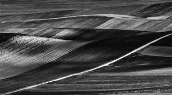 Gianluca Pollini - Lucania #7 Photograph on Fine Art Paper, Photography