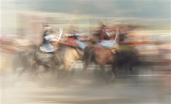 Danny Johananoff - Horse Game Photograph on Plexiglass, Photography