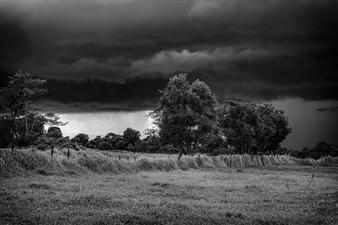 Roberto Silva - Rainforest Storm 1 Archival Pigment Print, Photography