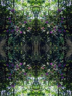 Stacey Dolen - Purple Flowers Digital Print on Aluminum, Digital Art