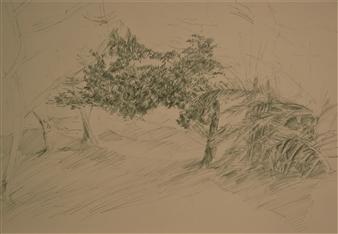 Caspar Baum - Sketch in the Garden Pencil on Paper, Drawings