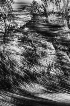 Erin Wang - Fleeting Landscape III Photograph on Fine Art Paper, Photography