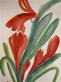 Aaron Cristofaro - Tulip C Watercolor on Paper, Paintings