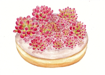 Charmaine Nadine Osaerang - Pink Jelly Beans Succulent Donut Watercolor on Paper, Paintings