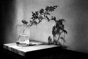 Harold Ong - Beautifully Abandoned Photograph on Hahnemühle Paper, Photography