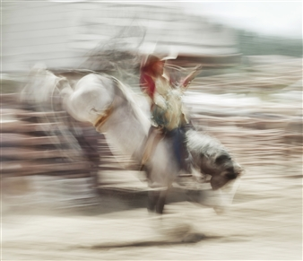 Danny Johananoff - Rodeo - 4 Photograph on Plexiglass, Photography