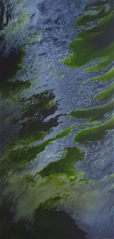 Alla Struchaieva - Travelling of the Thunderbird Oil on Canvas, Paintings