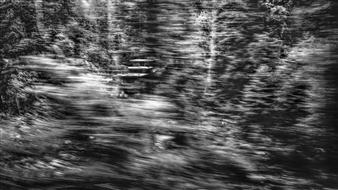 Erin Wang - Fleeting Landscape IV Photograph on Fine Art Paper, Photography