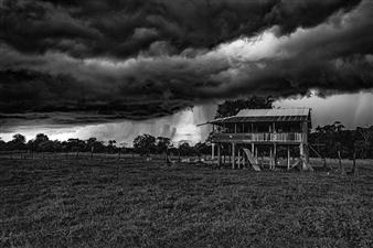 Roberto Silva - Rainforest Storm 2 Archival Pigment Print, Photography