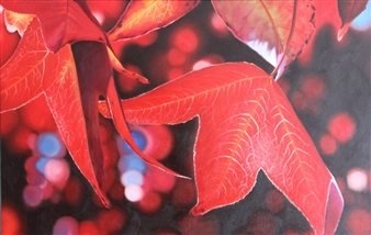 Pamela Sullivan - Maples Oil on Canvas, Paintings