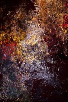 Paciel González - Génesis 8241 Digital Print and Acrylic on Canvas, Digital Art
