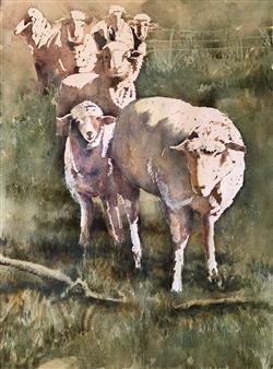 Pauli Zmolek - Seven Sheep Watercolor & Pastel on Paper, Paintings