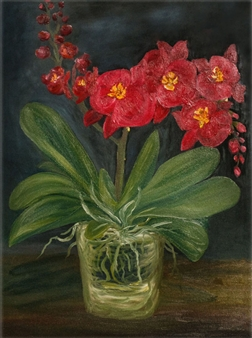 Dora Duran - Orchid Oil on Canvas, Paintings