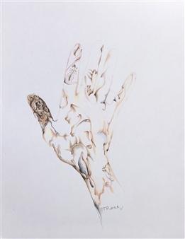 Tringa Khadija - Right Colored Pencil on Paper, Drawings
