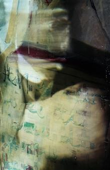 Gatscher<br /> von Burgsdorff - Zwei Seelen... Digital Photo Painting on AluDibond, Photography