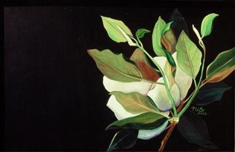 Nilo - Magnolia 1 Oil & Acrylic on Canvas, Paintings