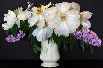 Pamela Bennett Ader - Spent Bouquet Archival Pigment Print, Photography