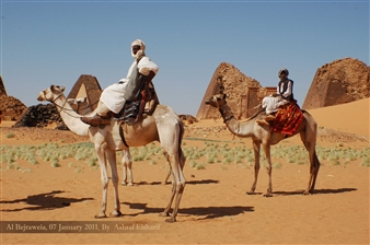 Ashraf Elsharif - Camel Riders Photograph on Fine Art Paper, Photography