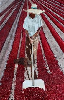 Maria Antonia Mena Lagos - Worker Drying Coffee Oil on Canvas, Paintings