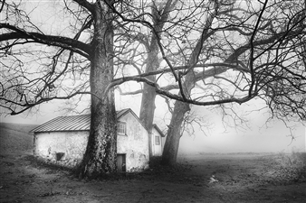 Annette Schreiber - Guardians Photograph on Hahnemühle Paper, Photography