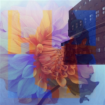 Stephanie Pitoy - Vibrancy Photo Collage, Photography