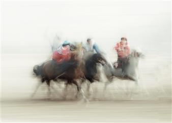 Danny Johananoff - Snach the Goat Photograph on Plexiglass, Photography