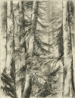 William Ingham - Wind in Cedars Pencil on Paper, Drawings