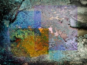 Angélique Droessaert - Hoar Frost Digital Artwork on Canvas, Digital Art