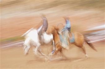 Danny Johananoff - Rodeo - 1 Photograph on Plexiglass, Photography