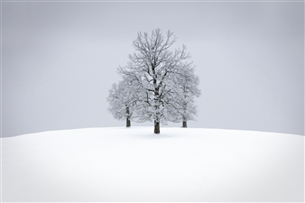 Paul Christener - Do You Hear The Sound of Silence? Photograph on Hahnemühle Paper, Photography