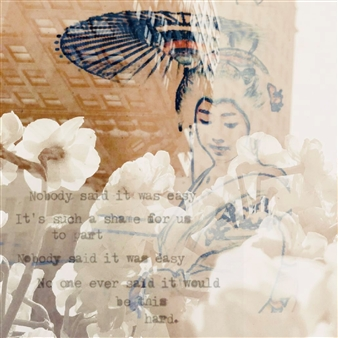 Stephanie Pitoy - Unfinished Thoughts, No. 10 Digital C-Print, Prints