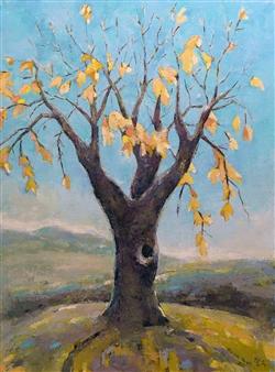 Becky Sungja Kim - Fall Tree in Virginia Oil on Canvas, Paintings